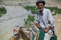 A man traveling on donkey back.