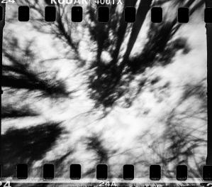 jan14038-3